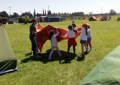Prim Camp 1ro a 3ro 3 Manos a la obra (3)