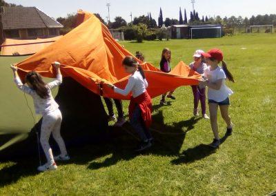 Prim Camp 1ro a 3ro 3 Manos a la obra (4)