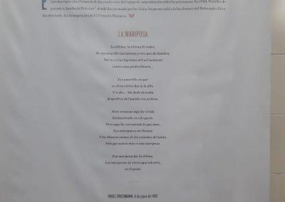 Prim 7° Visita Museo Holocausto (4)